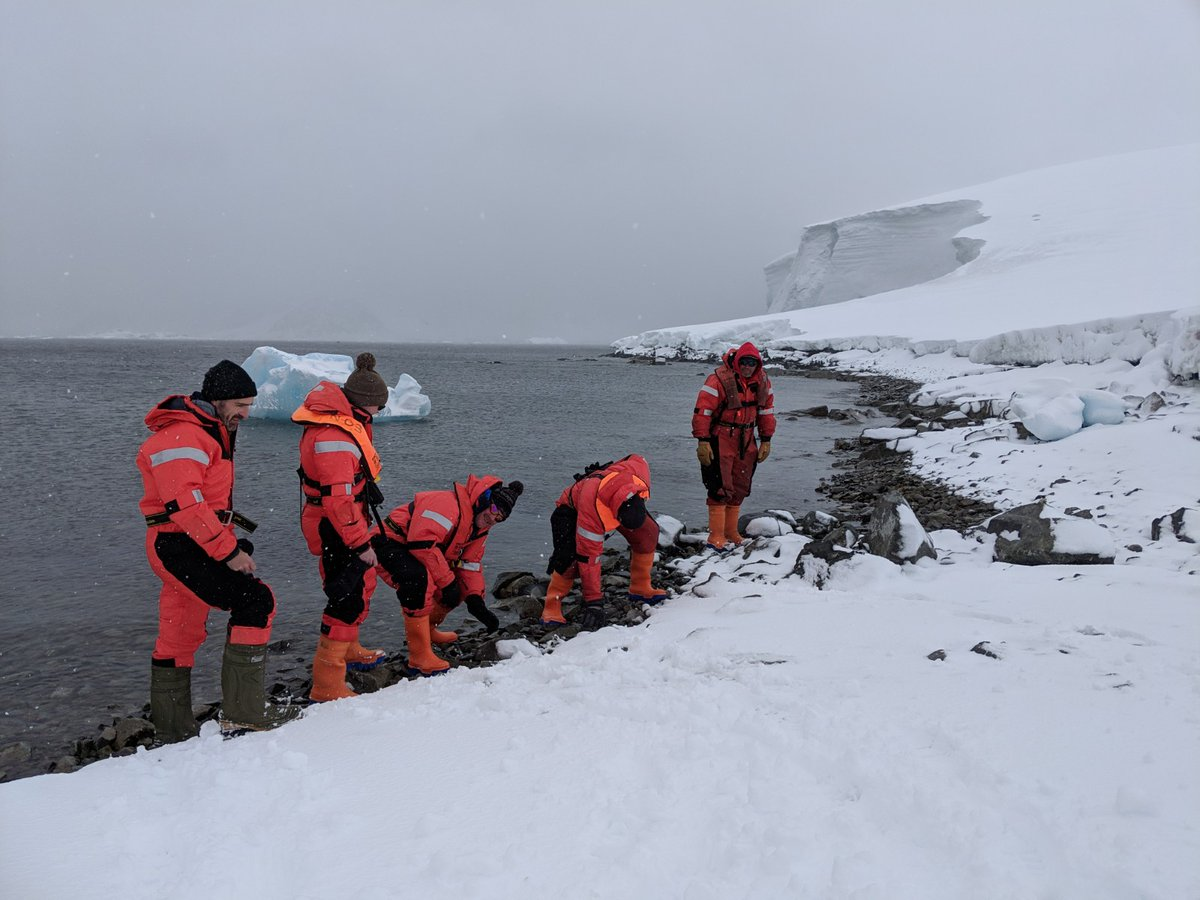 Photo Credit: Amber A / British Antarctic Survey. A team from the British Antarctic Survey on Adelaide Island, Antarctica, took to the freezing coastline in February 2019 as part of the first Great Global Nurdle Hunt.