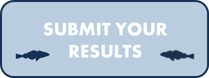 Submit results button